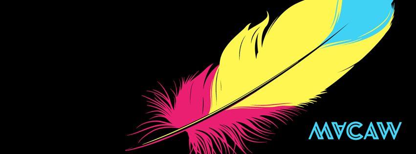 مكاو Macaw...أداة الجيل القادم لتصميم المواقع