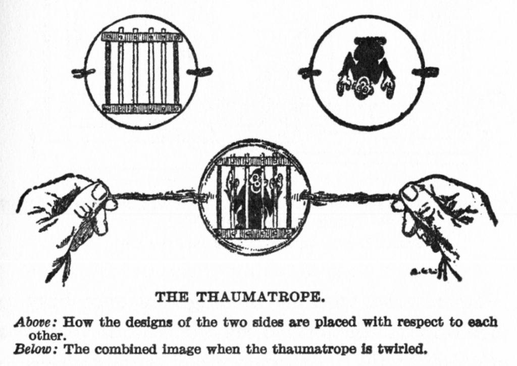 thaumatrope1